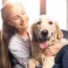 Setia dan Mudah Dipelihara! Ini 10 Jenis Anjing Ras Terbaik untuk Teman di Rumah