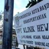 10 Dokter Hewan Terbaik di Bandung yang Terkenal Bagus Pelayanannya