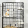Tips Memilih Kandang Kucing Anggora yang Ideal untuk Kesehatannya