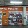 Lagi Cari Pet Shop Di Bogor? Ini Lho Daftar Alamat Beserta Reviewnya!