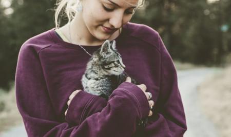 Biar Makin Penurut, Ini Rahasia Cara Merawat Kucing untuk Pemula yang Mesti Dilakukan!